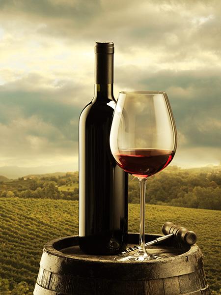 degustazione-vini-milano-pavia-sommelier